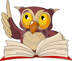 wise-owl-reading-book-15486499